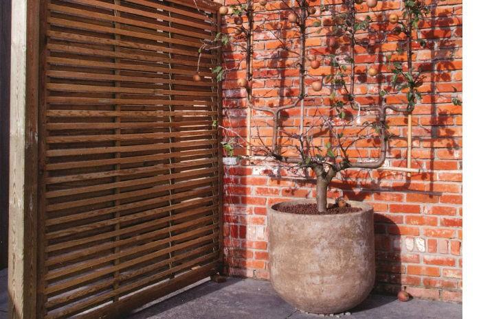 comment choisir la bonne palissade en bois pour le jardin. Black Bedroom Furniture Sets. Home Design Ideas